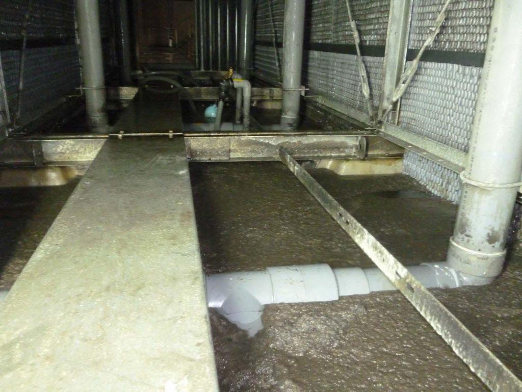 Water Treatment - bowen 117